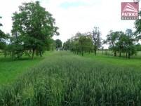 Pozemek - Přáslavice